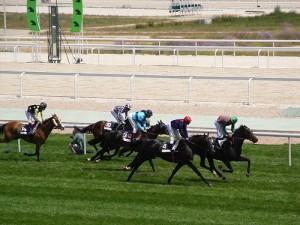 Carrera de caballos. jpg